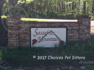 Sassafras Mountain Community