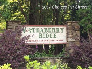 Teaberry Ridge Community