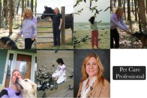 Pet Care Professional Collage