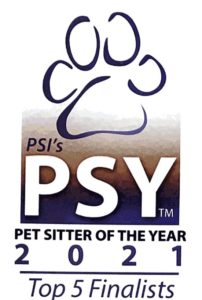 PSY 2021 Top Five Logo